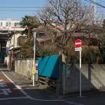 【Tokyo Train Story】東急大井町線のほっとさせられるような風景