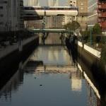 【Tokyo Train Story】夕暮れの運河(東京モノレール)