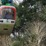 【Tokyo Train Story】緑の中の上野動物園モノレール
