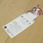 日本橋三越本店で開催せれている岩合光昭写真展「ねこ歩き」を見て、ネコ写真に囲まれて最高に幸せな気分になった!