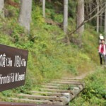 川と苔と緑に囲まれた川苔山登山道 初秋の奥多摩トレックリングの旅 その4