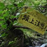 自然に囲まれた東京風景が奥多摩にある! 初秋の奥多摩トレックリングの旅 その5