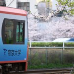 【Tokyo Train Story】葉桜(都電荒川線)