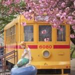 【Tokyo Train Story】八重桜に囲まれた飛鳥山公園の都電保存車両