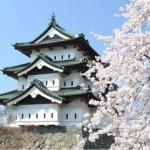【弘前さくらまつり速報】青森県の弘前の桜がこんなに美しいとは思ってもいなかった!