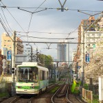 【Tokyo Train Story】春の名残の高戸橋(都電荒川線)
