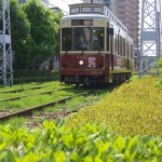 【Tokyo Train Story】緑いっぱいの景色の中を走る都電レトロ風車両9001