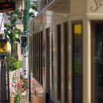 【Tokyo Train Story】都電荒川線の車体にバラが映り込む