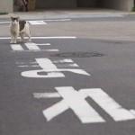 今週の365 DAYS OF TOKYO(6月9日~6月15日) ~ 北区田端の路地裏で暮らすネコたち