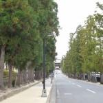 禅林街にある最勝寺の文化財を見て弘前旅行を終える 『弘前の桜を見に行こう!』 その26(最終回)