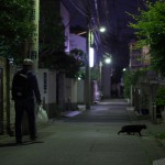今週の365 DAYS OF TOKYO(6月23日ー6月29日) 谷中と荒川のネコ