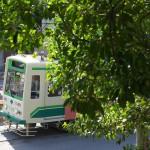 【Tokyo Train Story】新緑の飛鳥山公園から都電荒川線を見下ろす