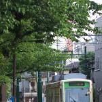 【Tokyo Train Story】緑一色な桜の葉(都電荒川線)