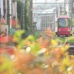 【Tokyo Train Story】キラキラな春の日(都電荒川線)