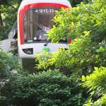 【Tokyo Train Story】新緑の中から上野動物園モノレール