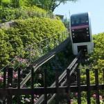 【Tokyo Train Story】アスカルゴの両脇に咲くアジサイ