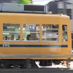 【Tokyo Train Story】黄色い都電を流し撮り