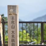 沢沿いを歩く6号路を通って高尾山を下山する『新緑の陣場山から高尾山への縦走』 その5