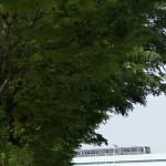 【Tokyo Train Story】新緑の景色を探して(ゆりかもめ)