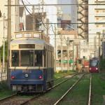 【Tokyo Train Story】夕暮れ時の優しい光(都電荒川線)