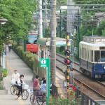 【Tokyo Train Story】桜の新緑(都電荒川線)