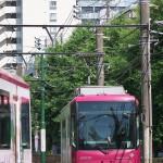 【Tokyo Train Story】新緑の季節、ピンクの都電同士のすれ違い