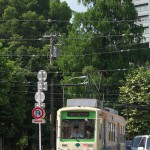 【Tokyo Train Story】飛鳥山公園下の緑(都電荒川線)