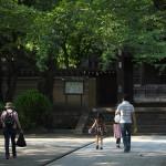 豊島区南池袋の法明寺や路地裏でネコ撮影をしてフォトウォークを終える 『雑司ヶ谷フォトウォーク2014夏』 その7(最終回)