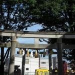 【Tokyo Train Story】大鳥神社境内から望む都電荒川線