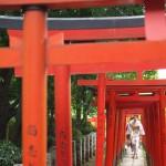 今週の365 DAYS OF TOKYO(9月15日~9月21日) ~ 根津神社の風景