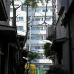 【Tokyo Train Story】都電荒川線の電チラスポット