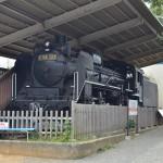 三島の楽寿園内にある蒸気機関車と夏の草花『夏の青春18きっぷの旅 三島路地裏散歩編』 その3