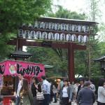 根津神社のお祭りと千駄木のネコ 『ぎゃらりーKnulpが主催する谷根千フォトウォーク』 その5(最終回)