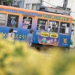 【Tokyo Train Story】花壇の向こうに(都電荒川線)