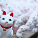 豪徳寺の招き猫たちと境内の紅葉風景 『豪徳寺の紅葉2014』 その2