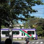 【Tokyo Train Story】緑いっぱいの都電荒川線