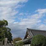 今週の365 DAYS OF TOKYO(12月1日~12月7日) ~ 谷中と新宿の空