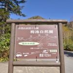 長野県小谷村の黄葉が始まった栂池自然園の湿地帯をのんびり歩く 『秋の紅葉を愛でる長野旅行』 その14