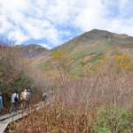 長野県小谷村の栂池自然園にあるわたすげ湿原をのんびり歩く 『秋の紅葉を愛でる長野旅行』 その15