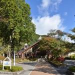 駒ヶ池周辺の水と森がある風景の中を散策する 『秋の紅葉を愛でる長野旅行』 その26