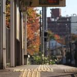 【Tokyo Train Story】秋の電停(都電荒川線)