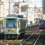 【Tokyo Train Story】バラが咲く線路際(都電荒川線)