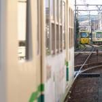 【Tokyo Train Story】バラ咲く電停に3両の都電荒川線