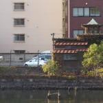 月島の朝潮橋のたもとに残る謎の廃寺 『佃・月島・築地 #AMNフォトウォーク 』 その8