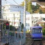 【Tokyo Train Story】東急世田谷線沿線の緑