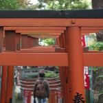 今週の365 DAYS OF TOKYO(12月29日~1月4日) ~ 上野と代々木の秋の景色