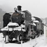 長野県塩尻市内にある重要伝統的建造物保存地区の奈良井宿へ 『冬の長野 アルクマ詣での旅』 その11