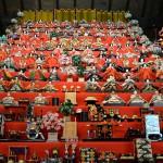 伊豆稲取の100年以上の歴史を誇る伝統の雛のつるし飾りを見学してみる 河津桜も咲いているよ! 『早春の伊豆の魅力再発見の旅』 その1