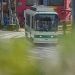 【Tokyo Train Story】緑のフィルターをかけて(都電荒川線)