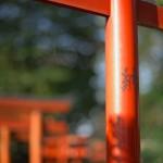 今週の365 DAYS OF TOKYO(4月13日~4月19日) ~ 根津と西日暮里の光と影がある光景
